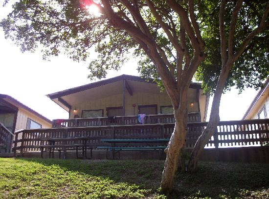 The Resort at Schlitterbahn: Cabin apartment overlooks river