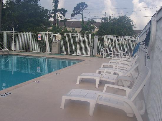 Candlewood Suites Clearwater: Pool