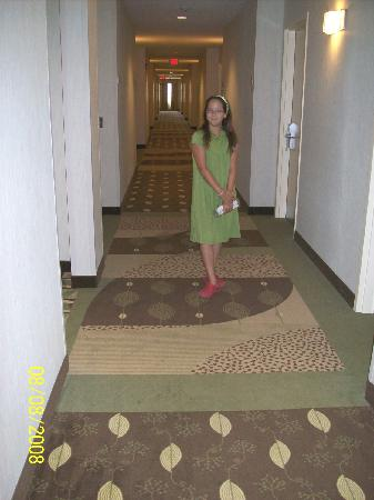 Holiday Inn Statesboro South: We simply love their different carpet designs in every hallway