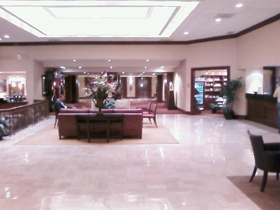 Hilton North Raleigh/Midtown: View of lobby from front doors