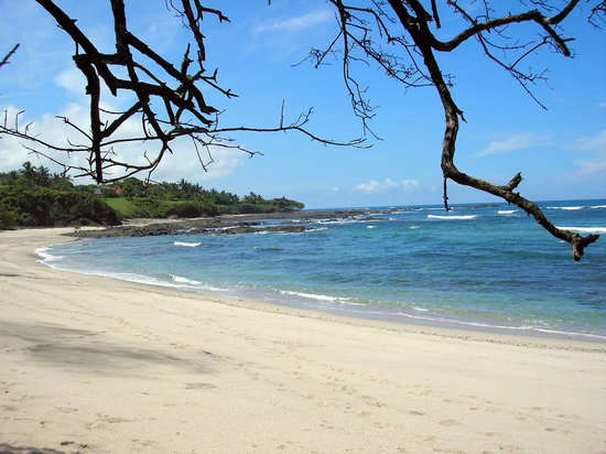 Santa Cruz, Costa Rica : Playa Blanca - 2 minutes walk from Hotel 