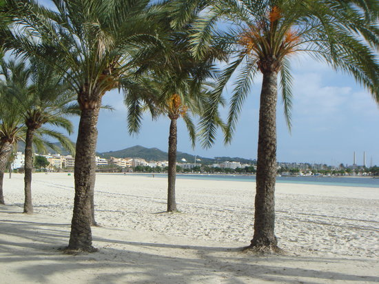 Port d&#39;Alcudia, Spain: Alcudia beach in winter
