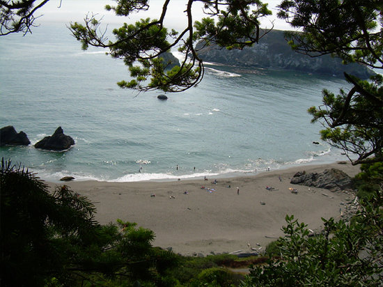 Brookings, OR: a view from a trail we were climbing from the campgrounds for a even better view than this.