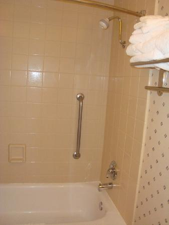 BEST WESTERN PLUS University Inn: Shower / Tub