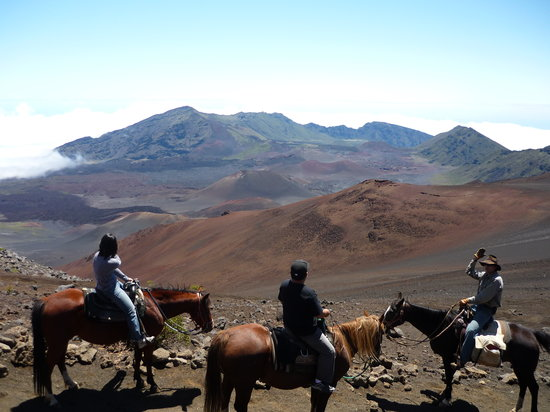 Maui Pony Express Tours