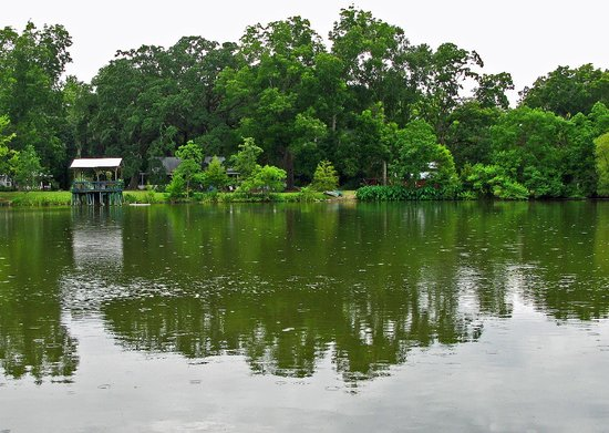 Breaux Bridge, Луизиана: View from our dock across the little lake, July 23, 2008.