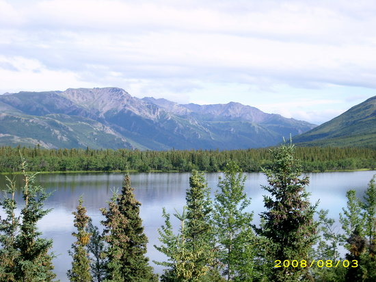 Healy, AK: The view out our back window