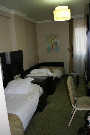 Yenisehir Palas Hotel: Double room