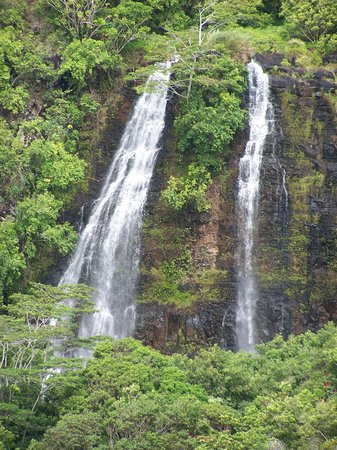 Kilauea, : Opeaka`a Falls, Wailua, Kauai