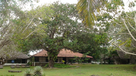 Photo of Hotel Diani House