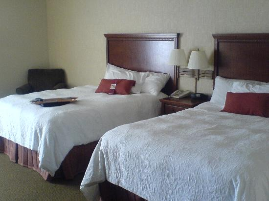 Beds picture of hampton inn st louis southwest valley for Southwest beds