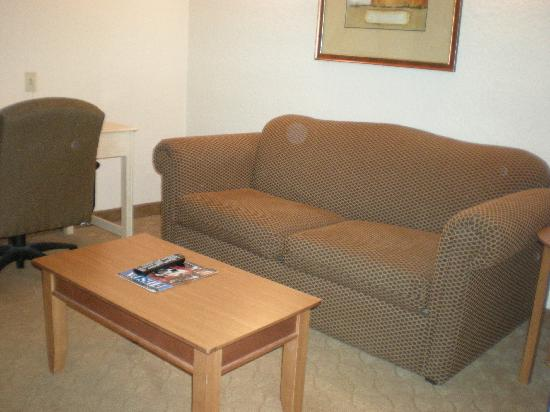 Hotel Mimosa Riverwalk: Livign room area