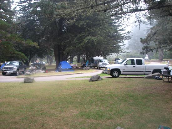 Plaskett Creek Campground  Big Sur  CA  - Campground Reviews    Plaskett Creek Campground Site 25