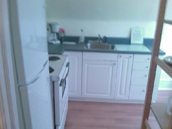 Radclyffe House Bed &amp; Breakfast: Clean Bright Open Kitchen, w/ Fridge, Sink, Stove, Microve, &amp; Table In The