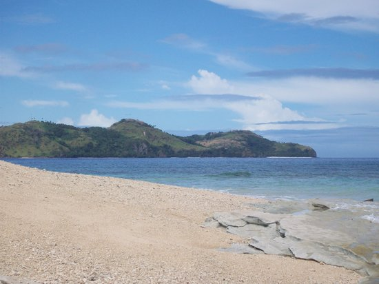 Pacific Harbour, Fiji: snorkelling at bird island - coral abounds