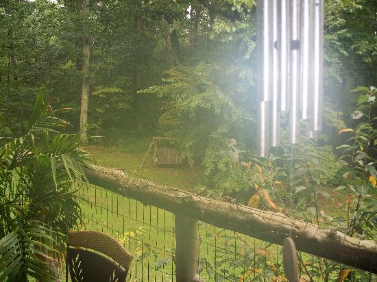 Mountain Grove at Cloudland: View from the back porch