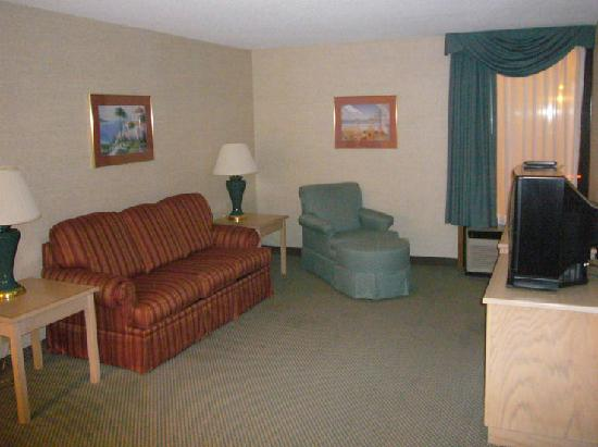 Hampton Inn Cape Girardeau: Nice comfortable livingroom