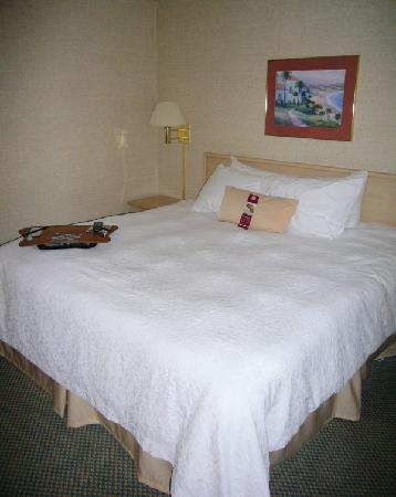 Hampton Inn Cape Girardeau: air conditioning was great in the bedroom
