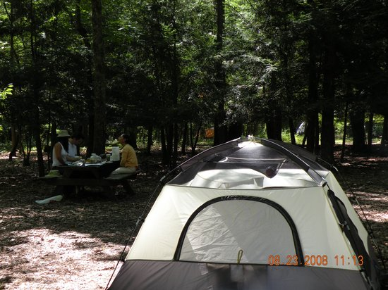 Dingmans Campground