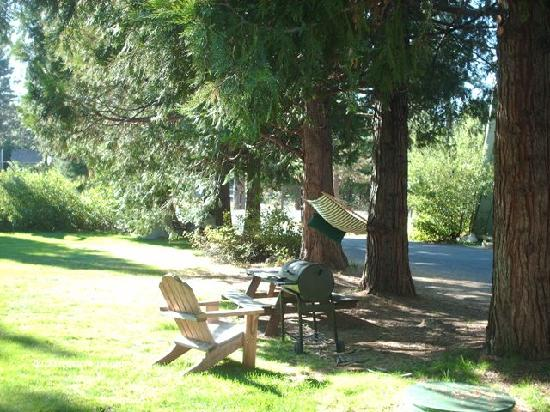 Dorrington Inn: A hammock and a barbeque?  Perfect.