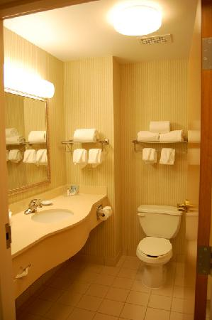 Hampton Inn Cleveland Airport-Tiedeman Rd: Bathroom