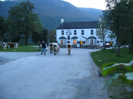 Photo of The Fish Inn Buttermere