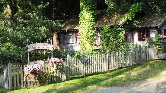 Country Cottage Bed & Breakfast: rose cottage outside