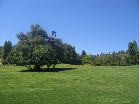Murphys, Californi: The grounds at Ironstone