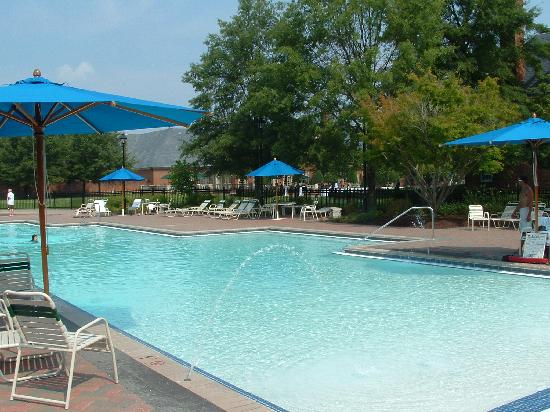 Pool for Affordable pools virginia beach