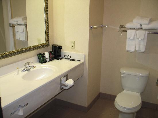 BEST WESTERN PLUS Danville Inn: bathroom
