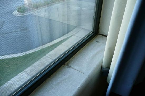 Comfort Inn: Kaputte Tapete am Fenster