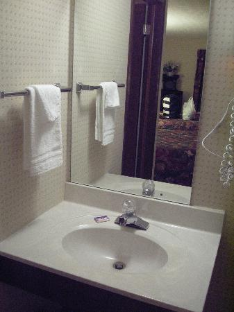 Knights Inn Sandusky: Sink area separate from bathroom.