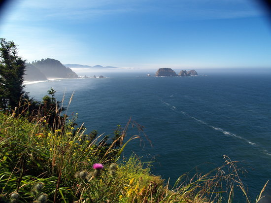 Oregon Coast, OR: view from Cape Meares Lighthouse