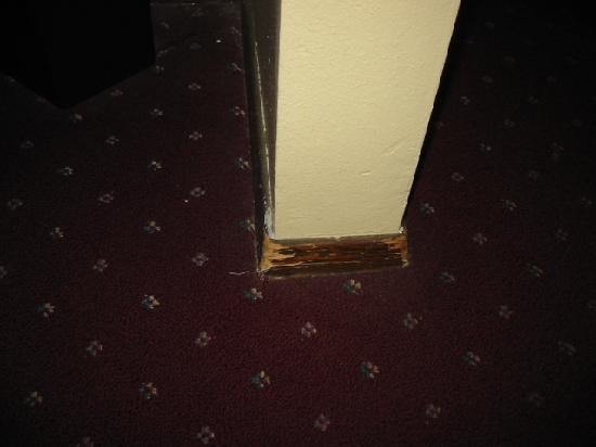 Medford Days Inn: scuffed baseboard