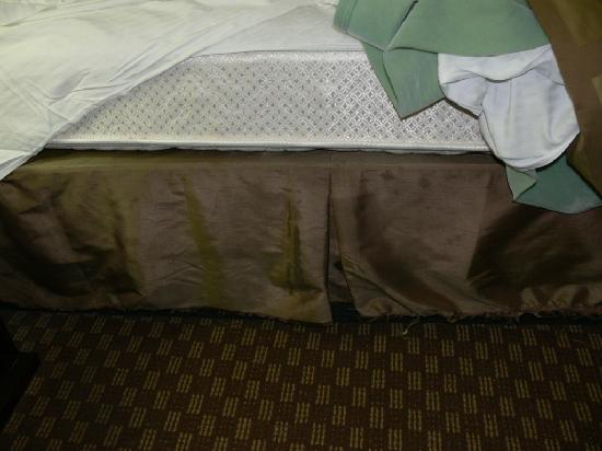 Quality Inn &amp; Suites-Capital District: Nasty stained bed ruffle