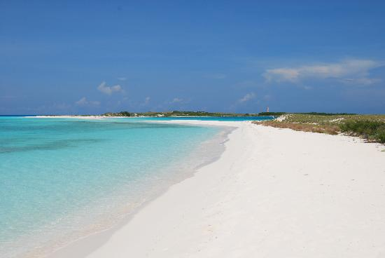 Isla El Gran Roque, Wenezuela: Cayo de Agua day trip .... sweet!