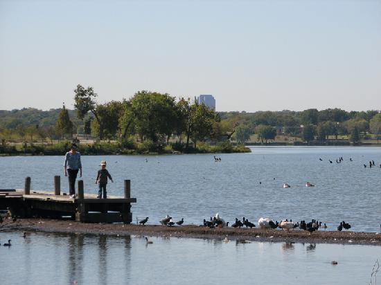 White rock lake park dallas tx address phone number for Fishing spots in dallas