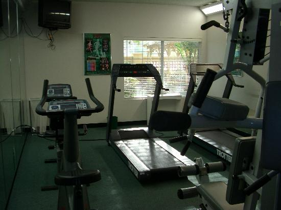 La Quinta Inn & Suites USF (Near Busch Gardens): Fitness Room