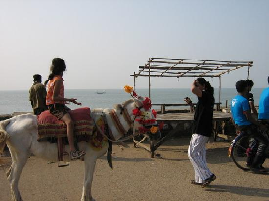 Pony Ride On The Beach Picture Of Digha West Bengal Tripadvisor