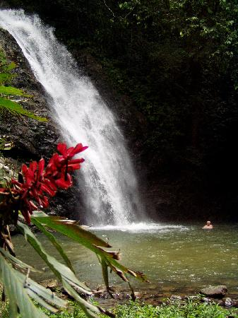 Sigatoka, Fiji: The waterfall
