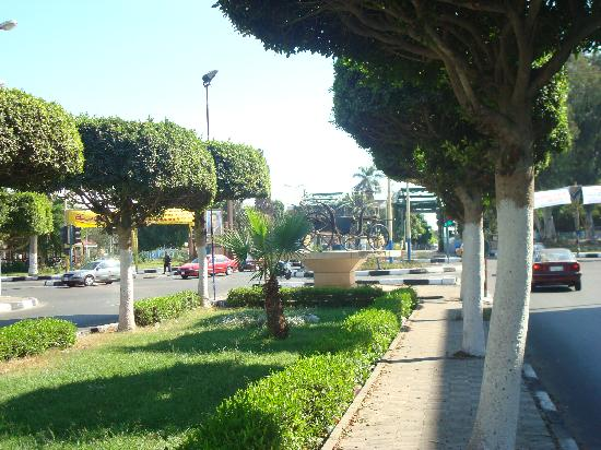 A beautiful Ismailia street leading to the Suez Canal