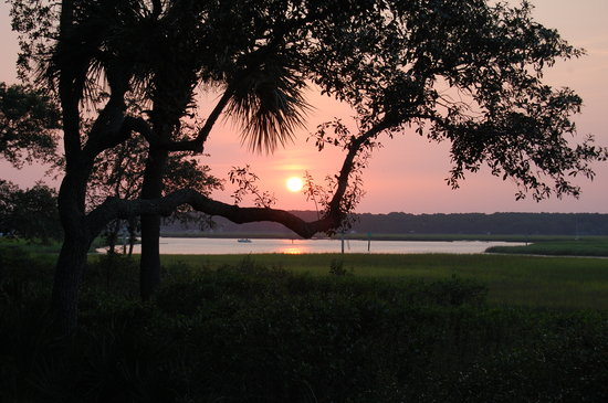 Disney's Hilton Head Island Resort: our last night they had a picnic BBQ and pool party