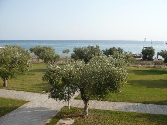 Fourka, Greece: Our view
