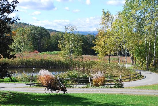 West Chesterfield, NH: Grounds out front of the Inn
