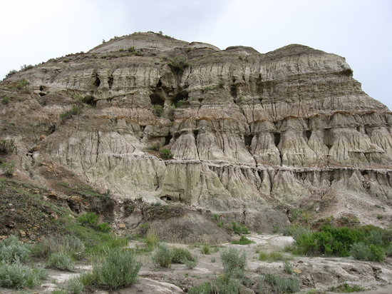 Dinosaur Provincial Park Alberta, Canada: Address, Phone Number