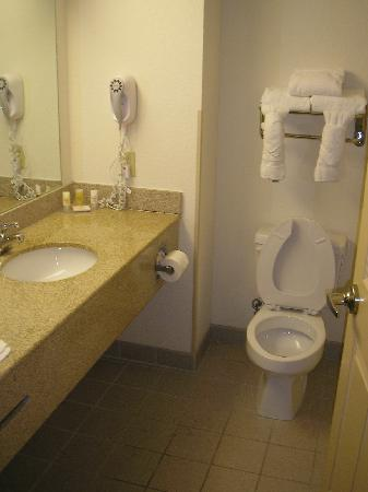 Quality Inn & Suites: Bathroom spotless