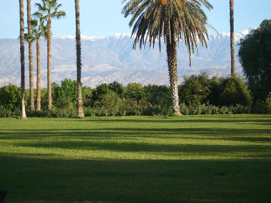 La Gazelle d'Or: The mountain views over the lawn
