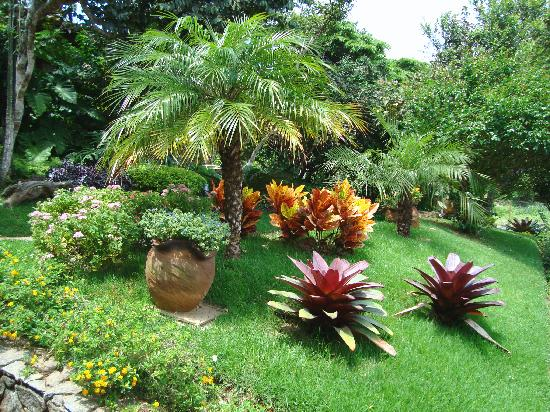 Que hermoso jard n picture of hotel la foret buzios for Jardin foret