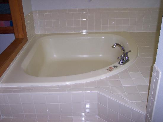 Garden tub in master bath Garden tube