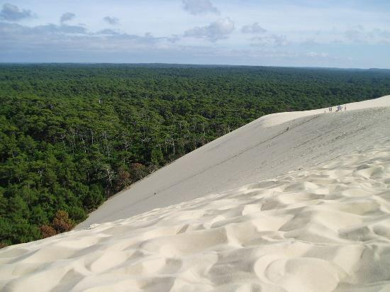 dune du pyla photo de la teste de buch gironde tripadvisor. Black Bedroom Furniture Sets. Home Design Ideas